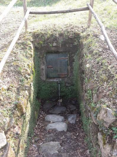 Natural spring water/La polla de' santi